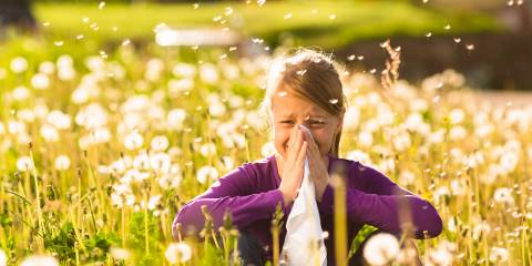 A little girl in a field, sneezing her poor head off.