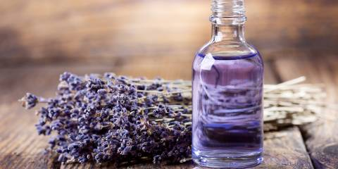 A bottle of calming lavender essential oil