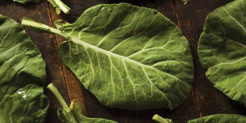 fresh organic collard greens