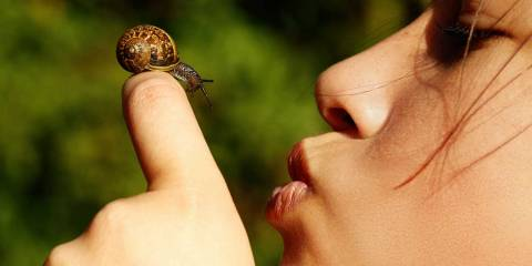 girl kissing slug