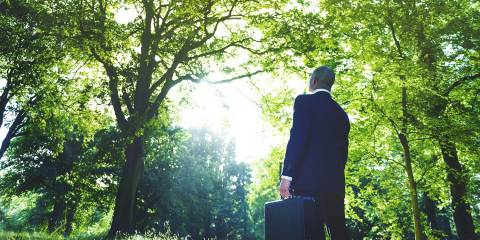 A businessman gazing at light coming through the forest canopy