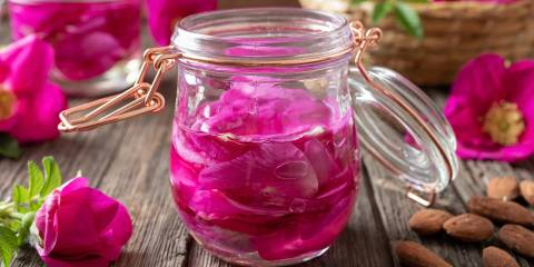 Rose petals macerating in almond oil, to prepare a homemade skin moisturizer.