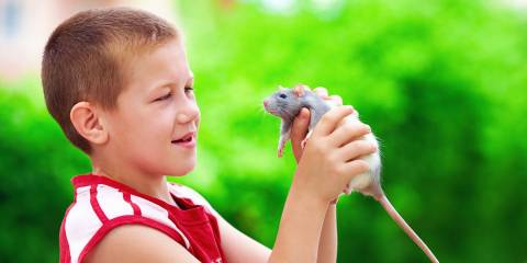 Boy and pet mouse.
