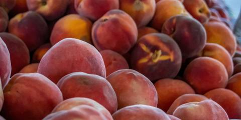 A nice pile of fresh organic stone fruit at the market