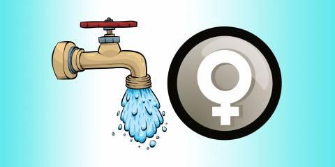 Urine Incontinence, Women