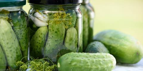 Jars of cucumbers fermenting with dill and garlic