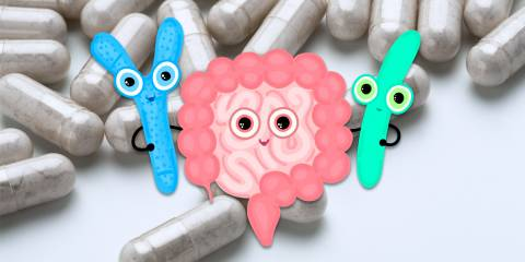 an illustration of happy intestines hugging good bacteria