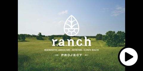 The logo of the Regenerative Agriculture, Nutrition, and Climate Health Project