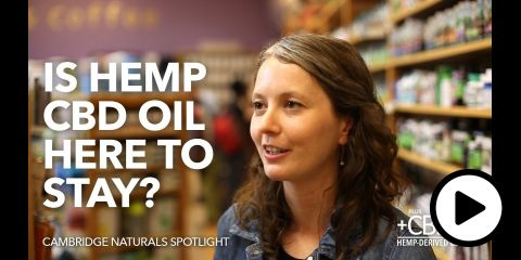 Embedded thumbnail for Is Hemp CBD Oil Here to Stay?