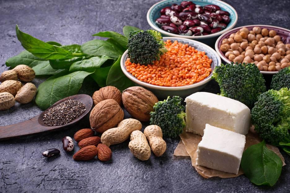 Pildiotsingu protein sources tulemus