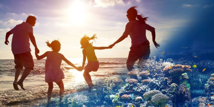 Sunscreen and other personal care products affect marine life