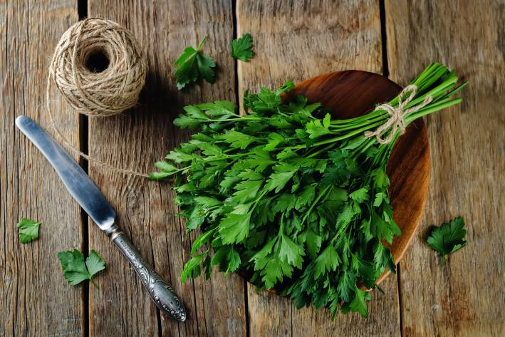 a spring of fresh parsley and gardening tools