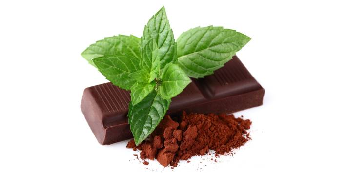 Chocolate, cocoa powder and mint leaves