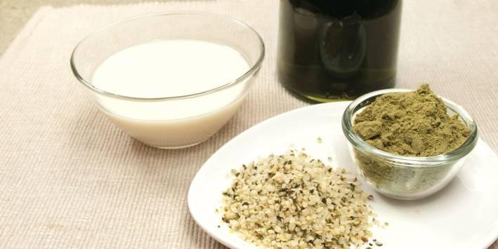 Hemp seeds and the milk they make