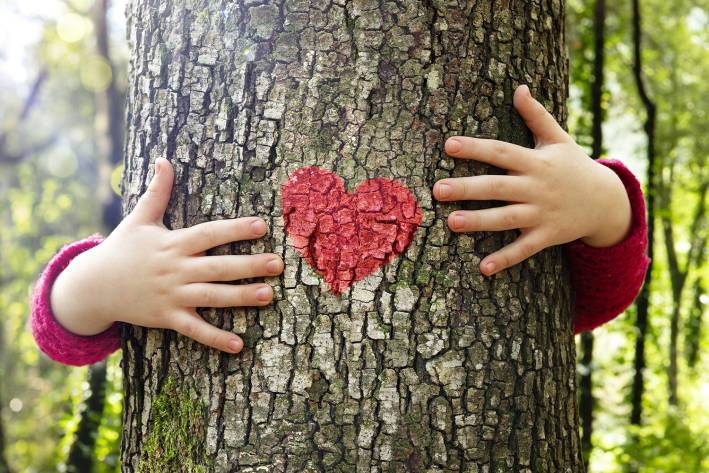 a little girl hugging a tree with a heart-shaped trail marker