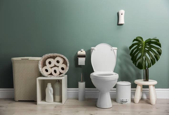 Eco-themed bathroom.