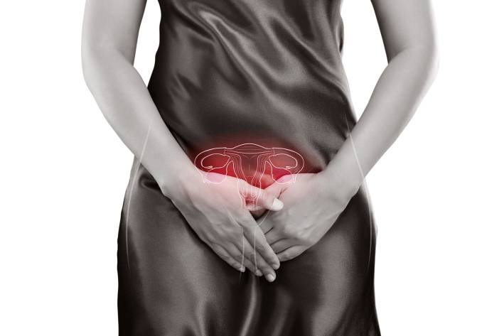 The photo of uterus is on the woman`s body, on white background.