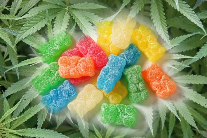 sugared gummy bears in a field of hemp