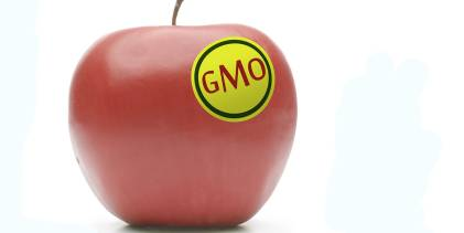 GMO Label apple