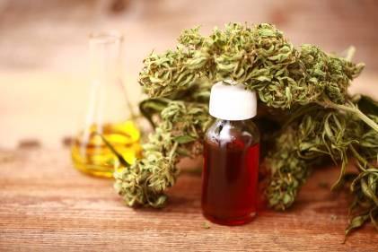 Hemp, hemp oil, and a CBD extraction