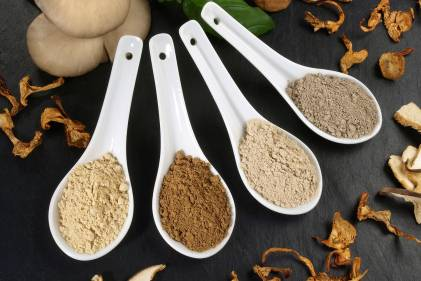 scoops of different powdered mushrooms