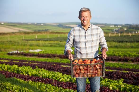 Organic farmer in a feild holding a harvest of vegetables.